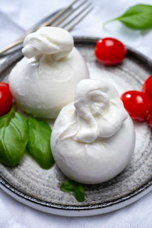 Cheese collection, fresh soft white burrata cheese ball made from mozzarella and cream from Apulia, Italy, close up 写真素材
