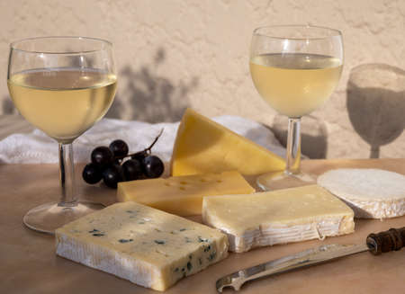 Tasting and pairing of cold white wine with different french cheeses in sunny Provence, France