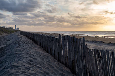 Sand fence on wide windy beach of North sea near Zandvoort in Netherlands in winter Stockfoto