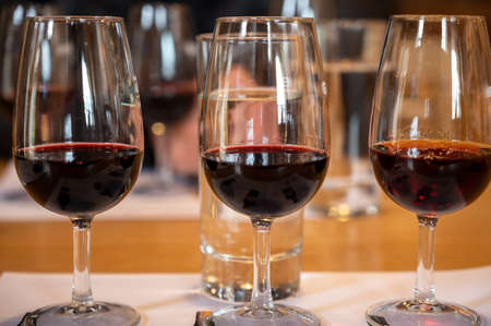Professional tasting of different fortified dessert ruby, tawny port wines in glasses in wine cellars in Porto, Portugal, close up Reklamní fotografie