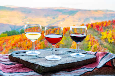 Tasting of Portuguese fortified dessert and dry port wines, produced in Douro Valley with colorful terraced vineyards on background in autumn, Portugal