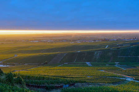 Amazing sunrise on rainy day over green grand cru vineyards near Cramant, region Champagne, France. Cultivation of white chardonnay wine grape on chalky soils of Cote des Blancs.