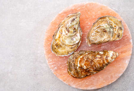 Eating of fresh big raw fine de claires vertes green french oysters from Marennes-Oleron, close up Banque d'images