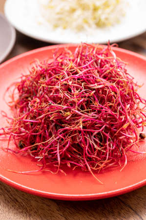 Healthy food, young sprouts plants or red beet ready for consumption