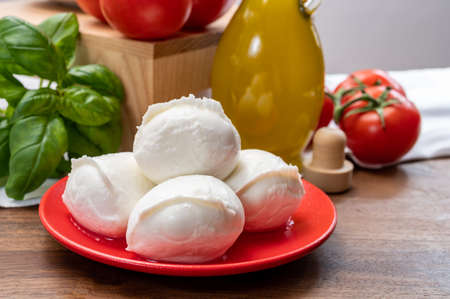 Cheese collection, small fresh white soft mozzarella cheese balls served with red tomatoes and fresh green basil from Italy close up