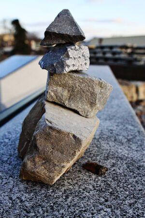 rock pile: Roach next to rock pile