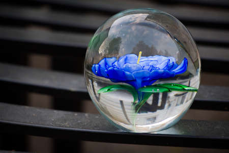 glass paper: Flower paperweight with sky reflection.