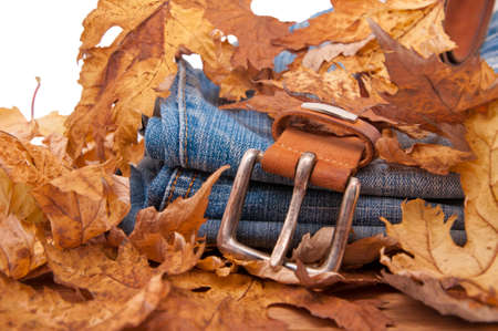 zigzagger: Blue jeans and belt buried fallen autumn leaves