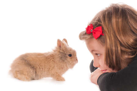 little girl with adorable rabbit over white background photo