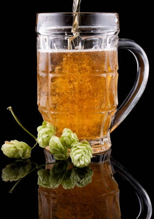 Cold beer is poured into a glass on a black background Stock Photo - 16398961