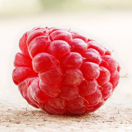 One ripe raspberry on background.