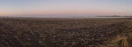 Panorama of field after harvest in the morning with fog.