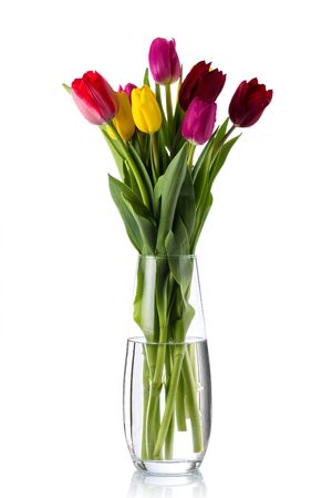 Beautiful bouquet of multi-colored tulips in a glass vase. Reklamní fotografie