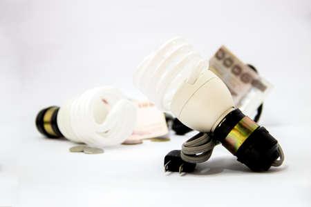 energy saver bulbs cool daylight save money