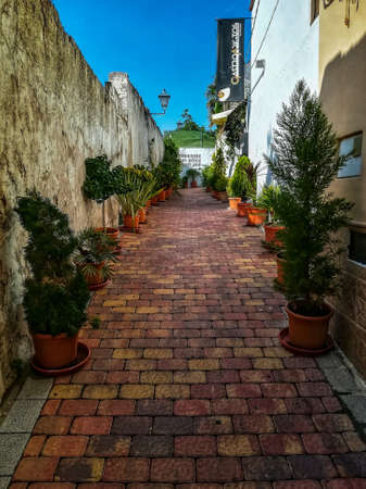 Beautiful little street with paved floor colors and cut with many plants
