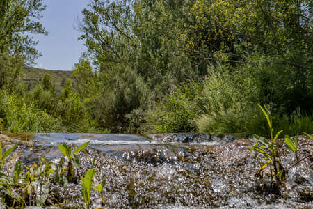 View of the Palancia River as it passes through Teresa Imagens - 128789581