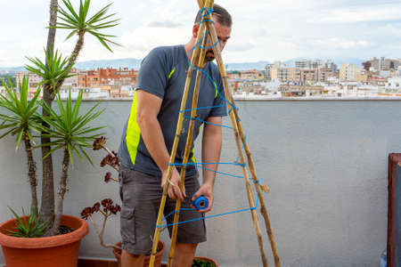 Bearded man fixing his urban garden with reeds and ropes to direct the plants. Healthy life concept