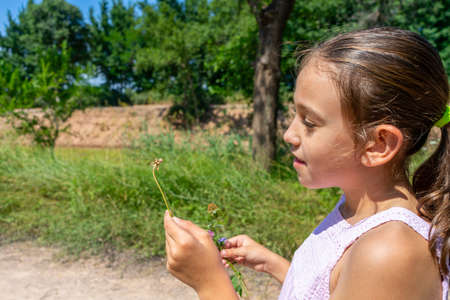 Pretty little girl with a mask to protect herself from the coronavirus picking a flower on a path surrounded by nature. Healthy life concept Standard-Bild