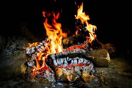 Flames in different forms of a bonfire made with orange tree trunks with a black background. Tranquility concept