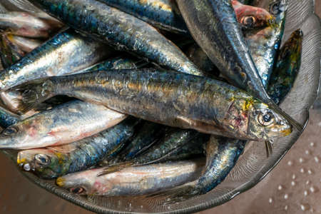 Strong men's hands preparing a skewer of fresh salty sardines in a glass bowl with a cane. Healthy food concept Stockfoto