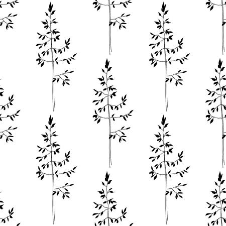 herbal background: Black seamless herbal pattern on white background
