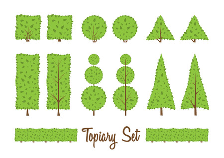 Different basic shape of bushes, trees.