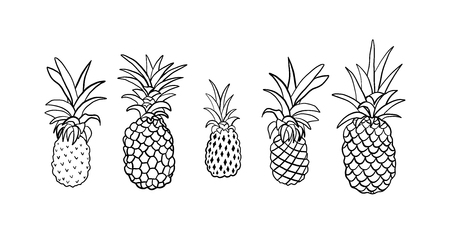Set of pineapple icon doodle style