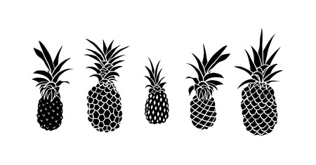 Vector set of five pineapple fruit doodle style. Tropical summer collection. Design for print on travel card, vacation shirt, etc Black and white illustration