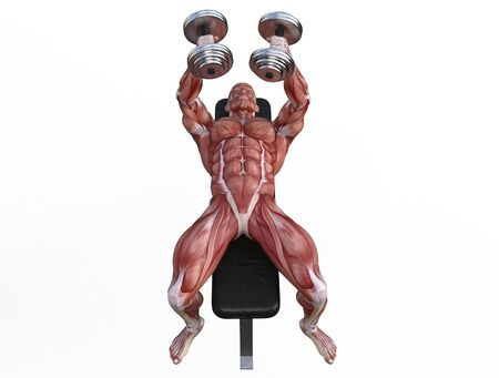 3D illustration of a muscle man posing and exercising with dumbbell for bodybuilding Banque d'images - 127835563