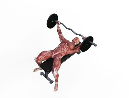 3D illustration of a muscle man posing and exercising with barbell for bodybuilding Banque d'images - 127835639