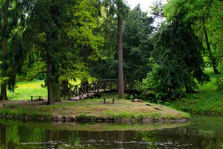 Small lake in a forest with trees and a bridge in Zamecky Park, in Hluboka nad Vltavou (Czech Republic)