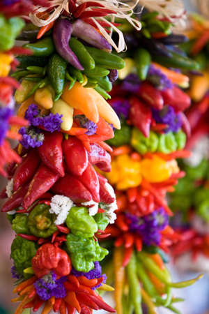 colorful chilly peppers