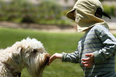 Boy feeding his dog in a park Stock Photo - 220785
