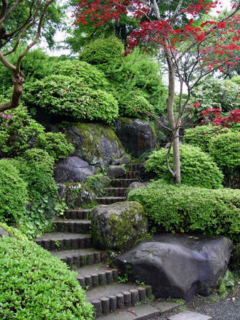 Japaneese garden with stairs and red maple tree photo