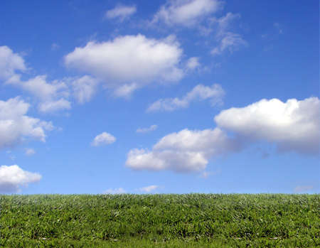 Background of sky and grass Stock Photo - 347407