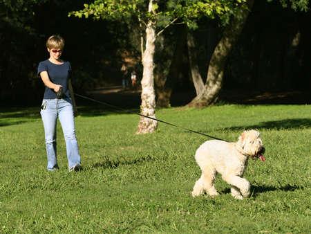Woman walking with her dog in the park Zdjęcie Seryjne