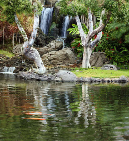japanese fall foliage: Waterfall and koi pond in japanese garden Stock Photo