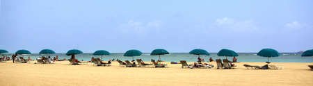 A panoramic shot of a beach with umbrellas photo