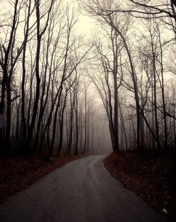 Gloomy road Stock fotó