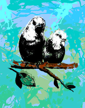 Vector illustration of two birds, parrots in eps Vector