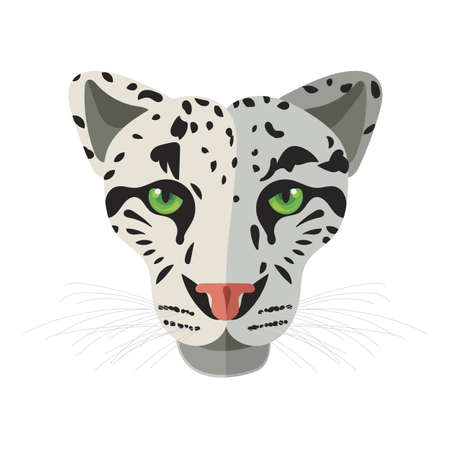 wild cat: Wild cat, irbis, leopard, snow bars in vector