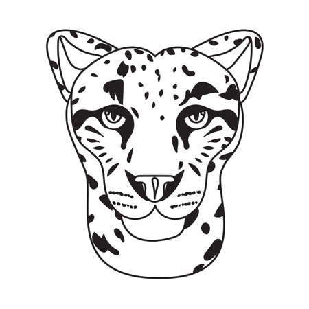 irbis: Wild cat, irbis, leopard, snow bars in vector