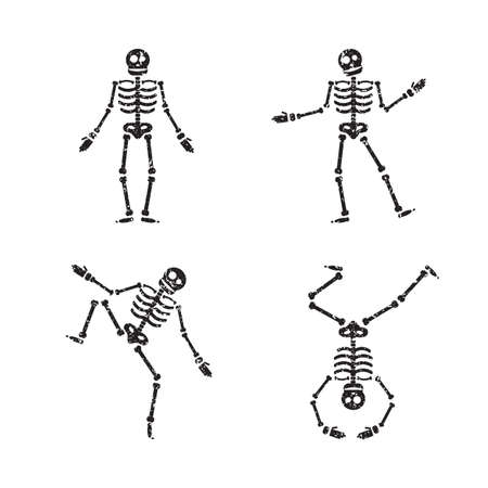 Halloween Skeleton Stock Photos. Royalty Free Halloween Skeleton Images