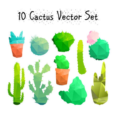 peyote: Hand Drawn Isolated Cactuses Set. Cactus in vintage style for textiles, print and etching. Line-art. Vector