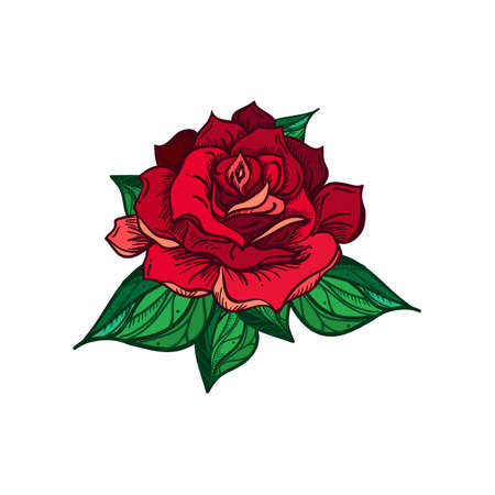 Hand Drawn Wedding Rose. Flower Template for wedding, holiday, celebration. Rose for print, tattoo and digital art. Vector