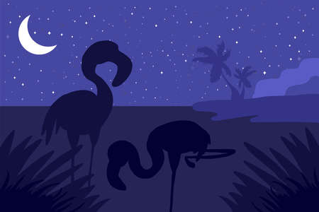 Landscape with flamingo silhouette flat illustration. Wildlife nature minimalistic night background Иллюстрация