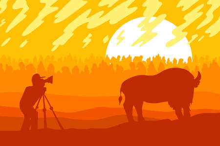 Wildlife, nature photographer flat vector illustration. Minimalistic landscape with bison silhouette