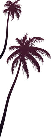 Palm trees silhouette vector illustration. Tropical flora, Exotic plants. Decorative border