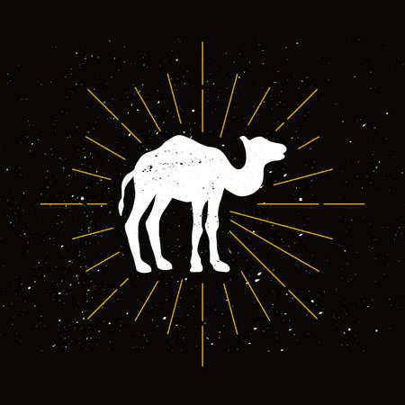Retro one humped camel silhouette. Exotic animal vector icon. Wilderness, desert fauna symbol Archivio Fotografico - 124891196