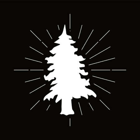 Retro fir silhouette logo. Park sign and vintage logotype. Tree icon. Ecology symbol. Vector